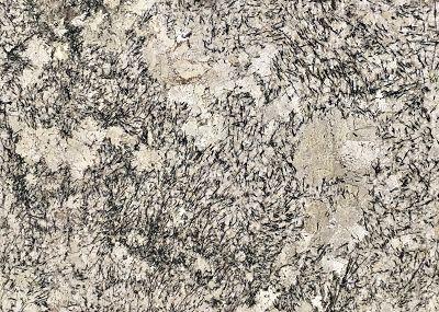 Granit ARTIC CREAM.JPG
