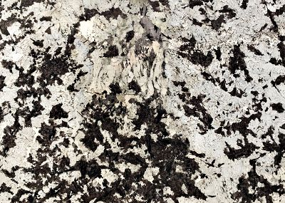 Granit Alasca White.JPG
