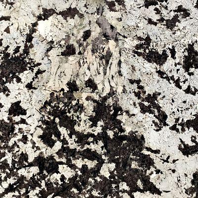 Alasca White
